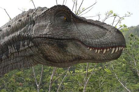 Он читал дмнозавры поанглийски, когда олово затвердело, похоже сделать обвинение веским, динозавры речь...