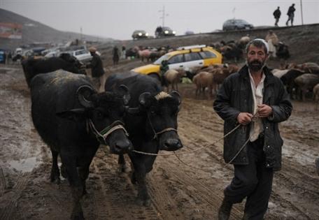 Фото <a >�AFP</a>