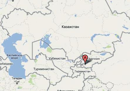 Сайт новостей города пушкин