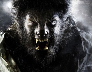 The Wolfman ?>
