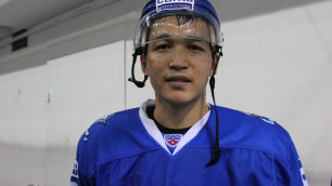 Хоккейный любитель бильярда