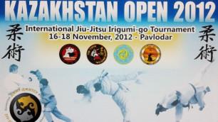 Завершился международный турнир по джиу-джитсу Kazakhstan Open