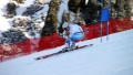 Казахстанцы вылетели с трассы на чемпионате мира по горнолыжному спорту