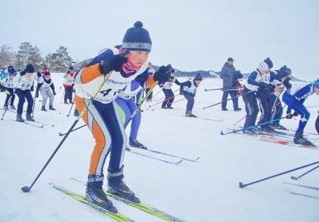 Весенние снежинки синегорья. Фото предоставлено администратором сайта wmsite.ru