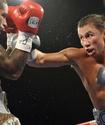 Бой Головкина попал в Топ-10 главных событий недели в мире боевого спорта