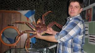 Краб Петрович предскажет результаты матчей ЧМ-2014 по хоккею