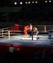 Боксеры из Астаны стали победителями Кубка КФБ