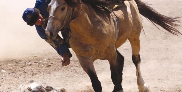 В Южном Казахстане во время игры в кокпар был застрелен наездник