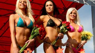 Девушки в бикини украсили гонку Daytona 500