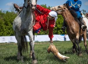 "В Федерации кокпар Казахстана ответили авторам передачи ""Орел и Решка"""