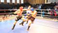 Спортсмены из ЮКО завоевали 8 золотых наград в Кубке РК по кикбоксингу
