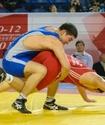Казахстанский борец Турсынов стал серебряным призером чемпионата Азии