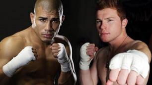 Победитель боя Котто-Альварес может получить специальный пояс чемпиона мира от WBC
