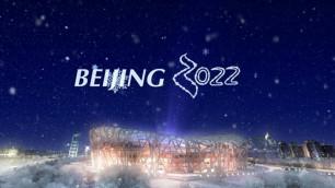 Назарбаев поздравил председателя КНР с избранием Пекина столицей зимних Игр-2022