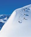 Австрийская лыжница подала в суд на 6-летнюю девочку за причененный здоровью вред