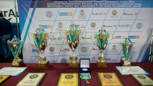 В Астане состоялся Открытый республиканский турнир по рукопашному бою среди мужчин