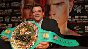 Бой Головкина против Альвареса в приоритете у WBC в 2016 году