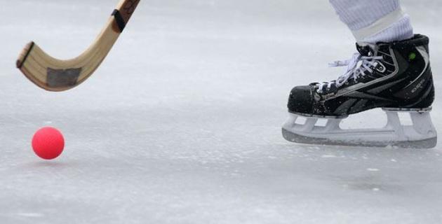 Сборная Казахстана вышла в полуфинал ЧМ по хоккею с мячом