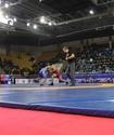 Сборная Алматинской области выиграла Кубок Конфедерации-2016 по вольной борьбе