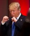 Дональд Трамп ответил отказом на предложение посетить бой Сауля Альвареса