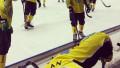 Сборная Казахстана по бенди упустила преимущество в четыре мяча и проиграла в четвертьфинале ЧМ