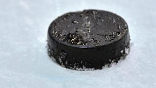 В США 18-летний хоккеист умер после обморока во время матча
