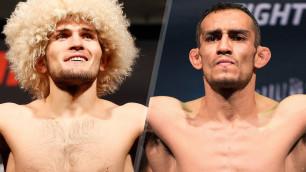 Букмекеры сделали прогноз на бой Хабиба Нурмагомедова с Тони Фергюсоном на UFC 209