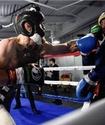 Малиньяджи предложил МакГрегору перенести выяснение отношений на боксерский ринг
