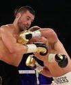 Давид Лемье сделал выбор между реваншами с Головкиным и Сондерсом