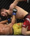 Озвучен заработок Хабиба Нурмагомедова за победу на турнире UFC 219