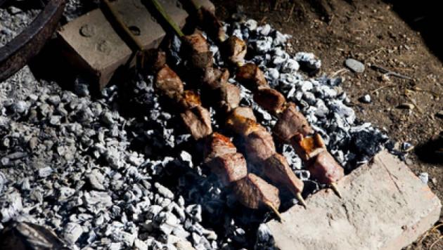 На время проведения ЧМ-2018 в России запретят жарить шашлыки
