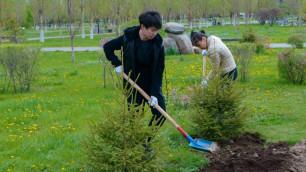 Казахстанские призеры Игр в Сочи-2014 и Рио-2016 посадили именные деревья в Астане