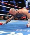 Эпатажный ирландец в костюме Бората покинул вес Головкина после нокаута от Лемье в первом раунде