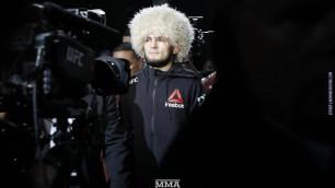 Нурмагомедов после победы над МакГрегором набрал 4 миллиона новых подписчиков в Instagram