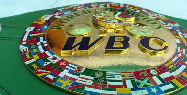 WBC попросил МОК сохранить бокс в программе Олимпийских игр