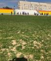 Клуб КПЛ после запрета КФФ поменяет газон на главном стадионе