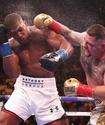 Энтони Джошуа объявил дату реванша против тренировавшегося с Головкиным боксера