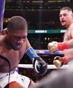 Промоутер Джошуа обозначил даты и места для реванша против тренировавшегося с Головкиным боксера