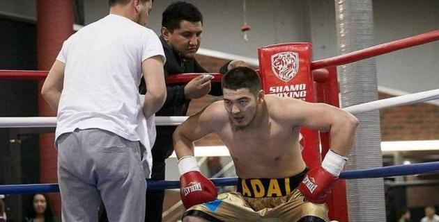 Видео тяжелого нокаута, или как небитый казахстанец потерпел первое поражение в бою за титул