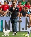 Фанаты клуба игрока сборной Казахстана закидали поле яйцами и выбросили курицу в знак протеста