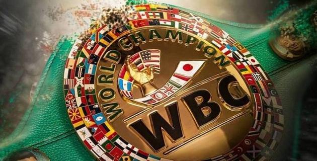 WBC внедрил санкции для профи-боксеров за участие в Олимпиаде