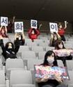 Южнокорейский футбольный клуб заменил зрителей на трибунах секс-куклами