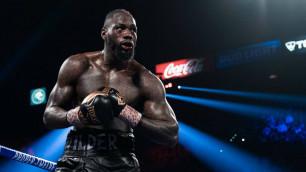 Титульный бой между Усиком и Уайлдером? В профессиональном боксе могут ввести новую весовую категорию