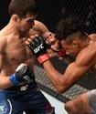 Огонь, буря и капкан. Казахстанские бойцы покоряют UFC и не только