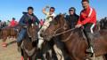 У призера Олимпийских игр украли 26 лошадей. Полиция раскрыла преступление