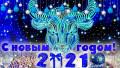 Vesti.kz и звезды казахстанского спорта поздравляют с Новым годом!