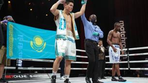 Дебюты, титулы, реванши и главное событие. Кто из казахстанцев в этом году удивит на профи-ринге