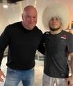 """""""Еще один непобежденный Нурмагомедов"""". Президент UFC высказался о победе брата Хабиба над Морозовым"""
