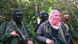 При спецоперации в Ингушетии ликвидировали трех боевиков