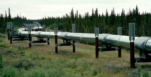 Нефть залила тысячу квадратных метров в Казахстане